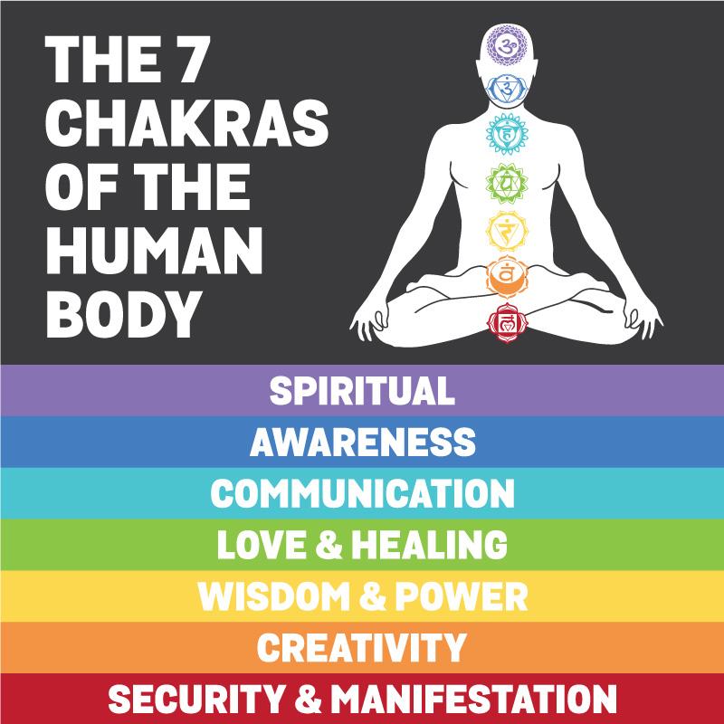 7 Chakra-Social