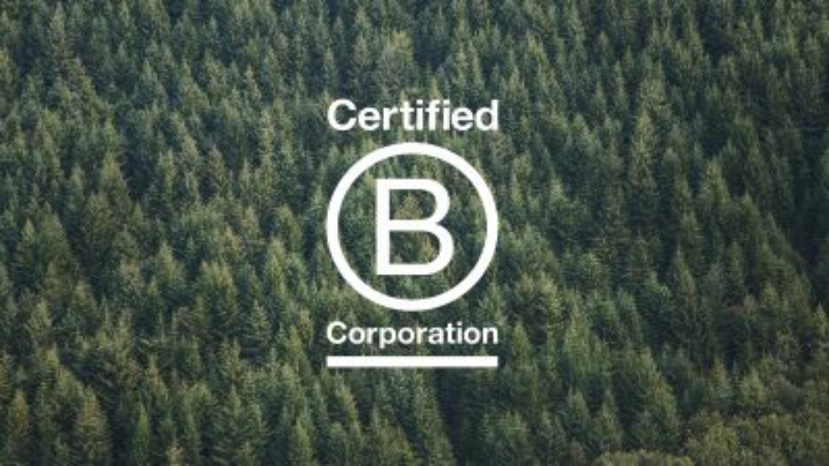 Lulu B Corp Blog Graphic Header with trees