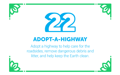 30 Ways in 30 Days #22 - adopt-a-highway