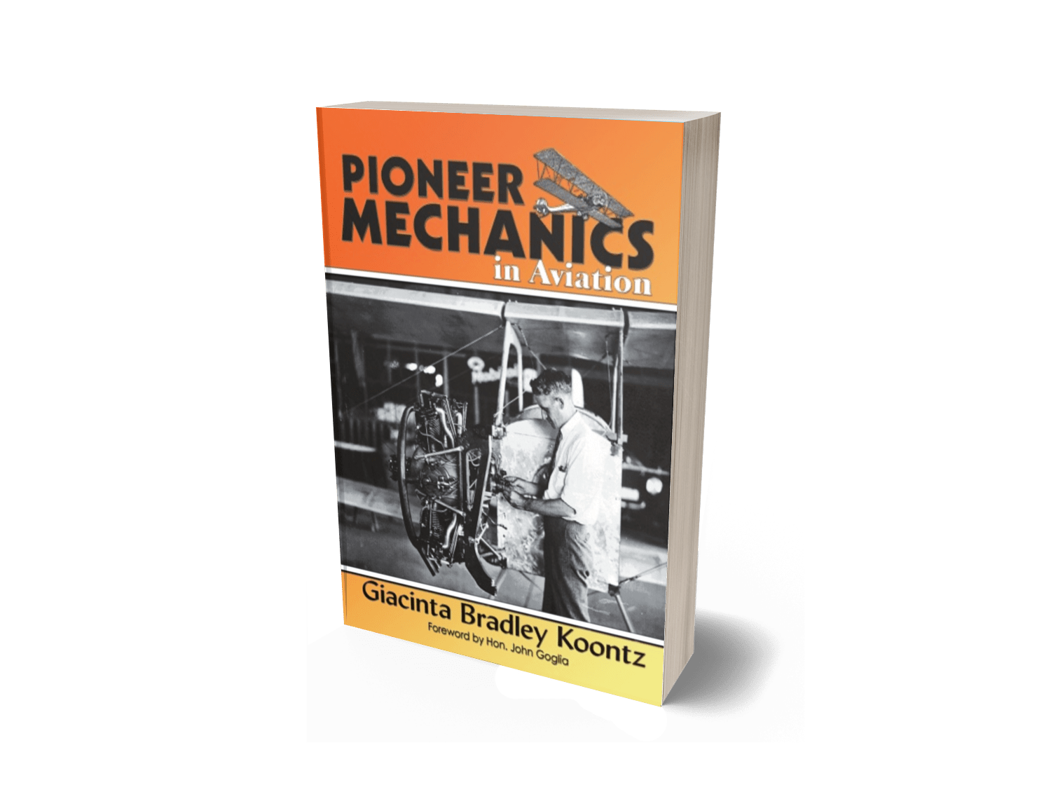 Pioneer Mechanics in Aviation