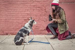 Woman kneels to take portrait of dog on sidewalk as part of