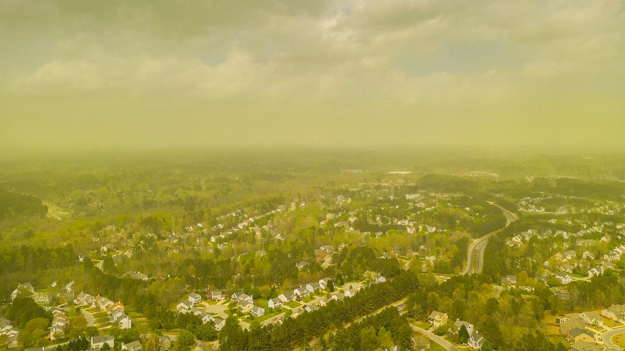Pollen over Raleigh NC