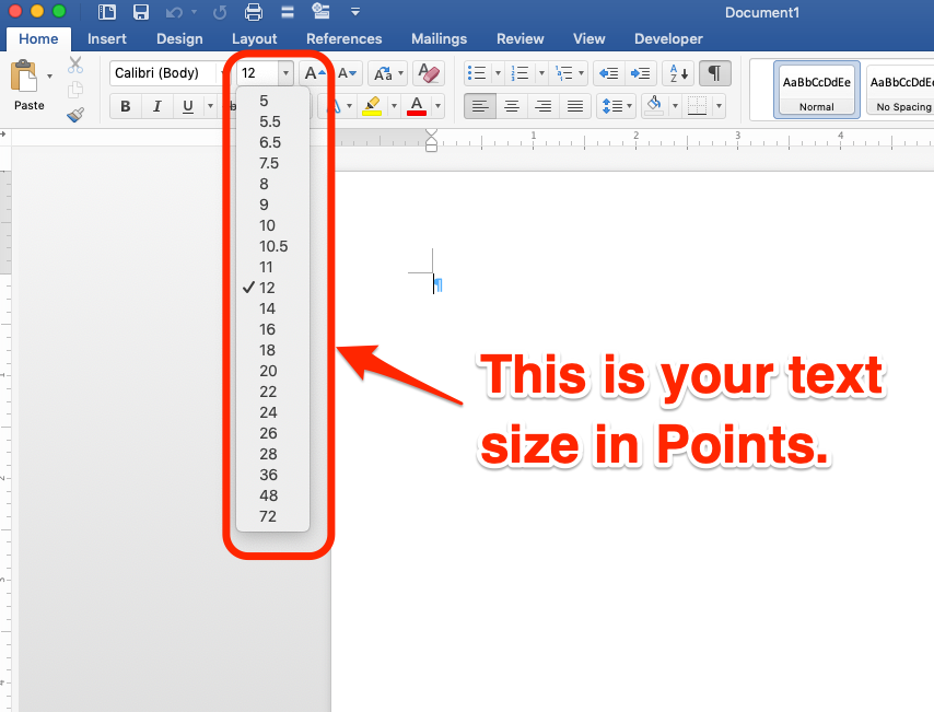 Text size in Points, in MS Word